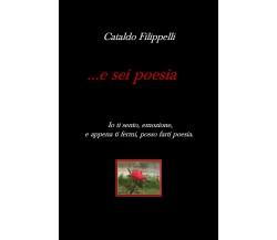 ... e sei poesiadi Cataldo Filippelli,  2019,  Youcanprint