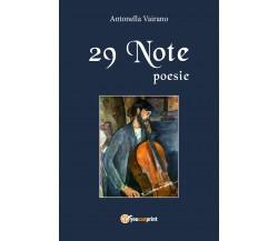 29 note di Antonella Vairano,  2018,  Youcanprint