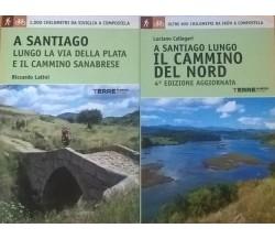 A Santiago lungo il cammino del Nord (Callegari) A Santiago . . . (Latini) Ca