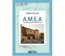 A.M.E.A. di Stefano Pacciani,  2019,  Youcanprint
