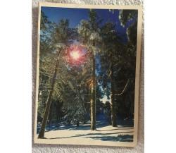 Album portafoto vintage I folletti di Aa.vv.,  Atelier Fotografico Ellegiemme