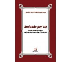 Andando per vie di Pietro Spitaleri Perdicaro,  Algra Editore