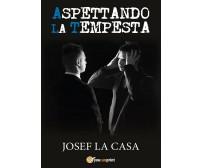 Aspettando la tempesta  di Josef La Casa,  2017,  Youcanprint