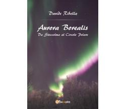 Aurora borealis. Da Stoccolma al circolo polare - Davide Ribella,  2017 - P