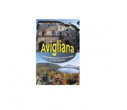 Avigliana, il borgo medioevale, il cuore verde e i suoi dintorni - Lodovico Marc