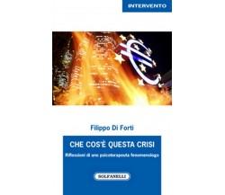 CHE COS'È QUESTA CRISI di Filippo Di Forti,  Solfanelli Edizioni