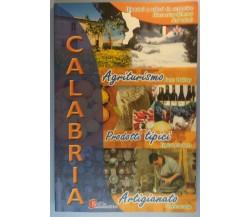 Calabria, Itinerari e valori da scoprire - AA. VV. - Scilla Editrice - 2005 - G