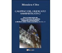 Calepino del giudicato amministrativo  di Monica Cito,  2014,  Youcanprint