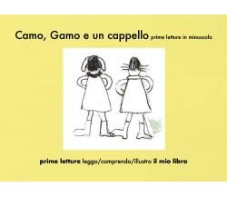 Camo, Gamo e un cappello, prime letture in minuscolo - Elena Iiritano,  2020