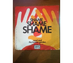 Carol and the boston garden - Shame shame shame - 1975 - M