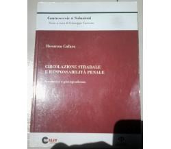 Circolazione stradale e responsabilità penale - R. Cafaro - 2008, Halley - L