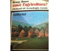 Cos'è l'agricoltura? - Bosso - 1982 - Calderini - lo