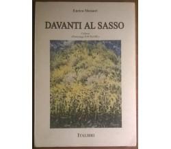 Davanti al sasso - Enrico Messori - 1994, Italibri  - L