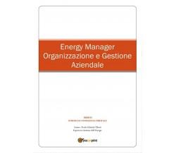 Energy Manager - Organizzazione e Gestione Aziendale di Gabriele Uberti,  2016