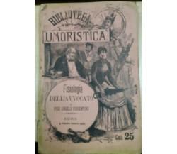 FISIOLOGIA DELL'AVVOCATO - PIER ANGELO FIORENTINO - E. PERINO - 1885 - M
