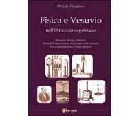 Fisica e Vesuvio nell'Ottocento napoletano  di Michele Giugliano,  2013
