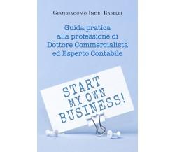 Guida pratica alla professione di dottore commercialista ed esperto contabile di