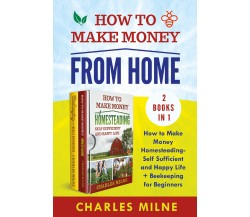 How to Make Money from Home (2 Books in 1). How to Make Money Homesteading-Self