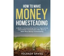 How to make money homesteading di Yolanda Davies,  2021,  Youcanprint