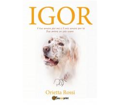 Igor (La mia vita con un Setter Inglese) di Orietta Rossi,  2021,  Youcanprin