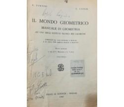 Il Mondo Geometrico - Fortini - Cateni - 1980 - Felice Le Monnier - lo