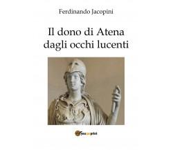 Il dono di Atena dagli occhi lucenti di Duccio,  2017,  Youcanprint
