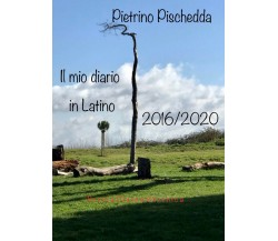Il mio diario in latino di Pietrino Pischedda,  2021,  Youcanprint
