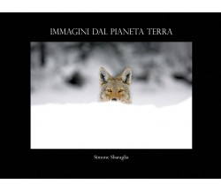 Immagini dal Pianeta Terra di Simone Sbaraglia,  2018,  Youcanprint