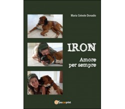 Iron. Amore per sempre di M. Celeste Donadio,  2015,  Youcanprint
