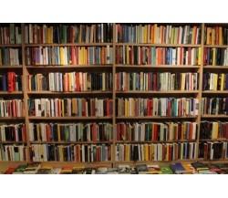 Lotto stock 100 libri misti usati