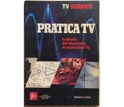 Pratica TV di Amadio Gozzi, 1982, Jacopo Castelfranchi Editore