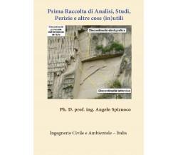 Prima Raccolta di Analisi Studi, Perizie e altre cose (in)utili, Angelo Spizuoco