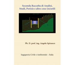 Seconda Raccolta di Analisi Studi, Perizie e altre cose (in)utili, A. Spizuoco