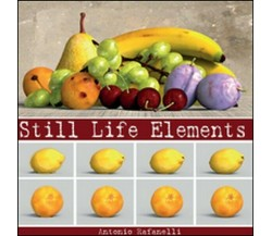 Still life elements,  di Antonio Rafanelli,  2015,  Youcanprint  -  ER