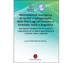 Valorizzazione energetica di residui e sottoprodotti della filiera agroaliment.