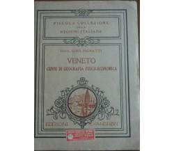 Veneto - Gino Pignatti - Sandron,1931 - A