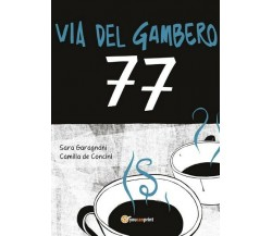 Via del gambero 77  di Sara Garagnani, Camilla De Concini,  2017,  Youcanpri- ER