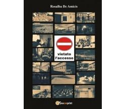 Vietato l'accesso  di Rosalba De Amicis,  2017,  Youcanprint - ER
