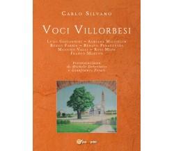 Voci villorbesi - Carlo Silvano,  2019,  Youcanprint